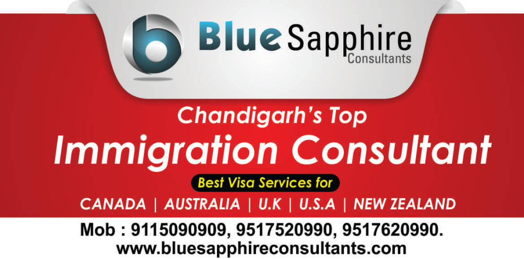 Blue Sapphire Consultants
