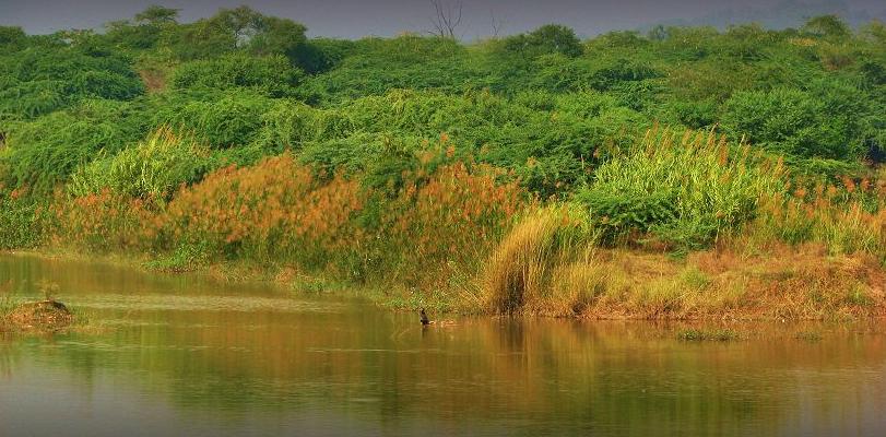 Sukhna Wildlife Sanctuary